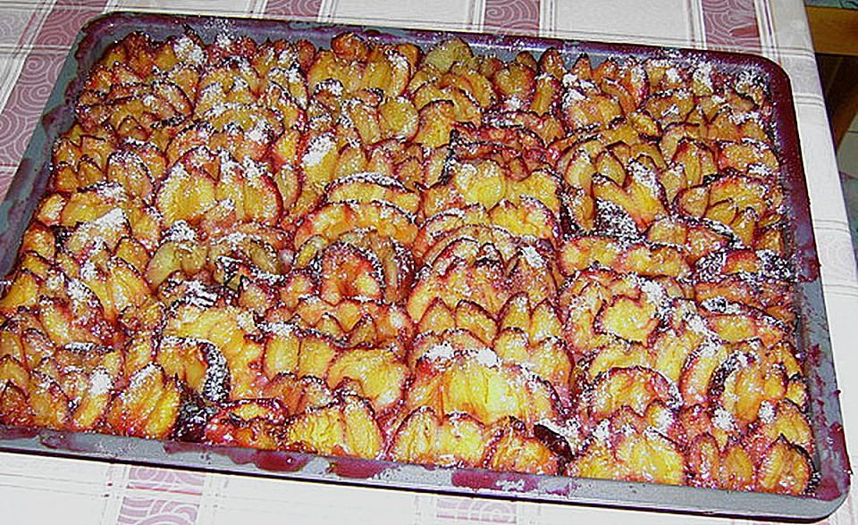 Pflaumenkuchen mit hefe