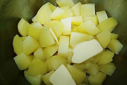 Kartoffelbrei 89