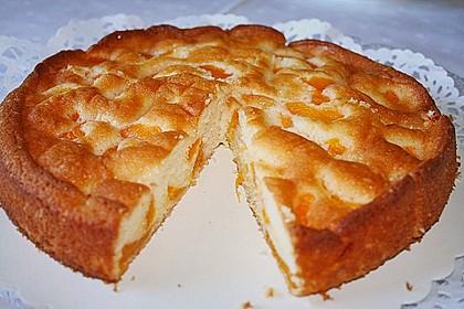 Superleckerer Mandarinen - Joghurt - Kuchen 1