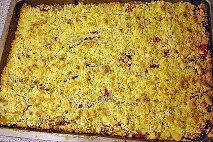 Pflaumenkuchen mit Streuseln auf dem Blech 9