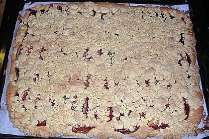 Pflaumenkuchen mit Streuseln auf dem Blech 21