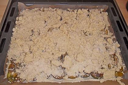 Pflaumenkuchen mit Streuseln auf dem Blech 18