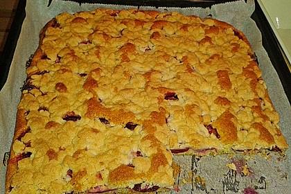 Pflaumenkuchen mit Streuseln auf dem Blech 10
