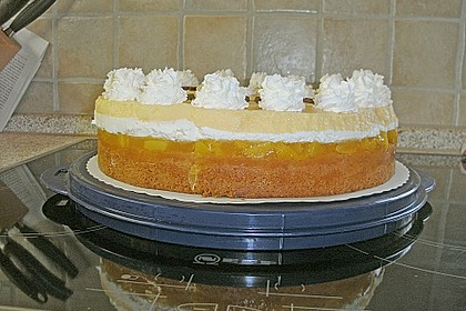 Multivitamin-Torte 221