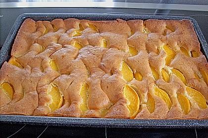 Pfirsich - Mandel - Kuchen 2