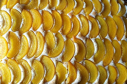 Pfirsich - Mandel - Kuchen 1