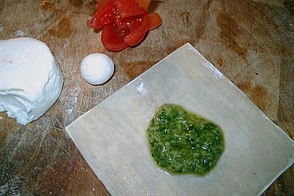 Cocktailtomate im Pesto - Wantanteigmantel mit Ziegenfrischkäse gefüllt 4