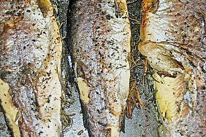 Forelle aus dem Backofen 12