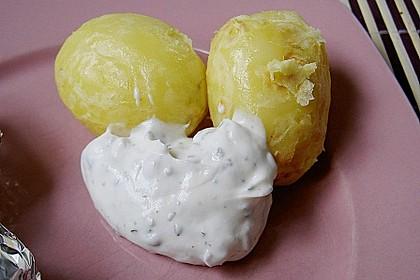 Sour Cream 23