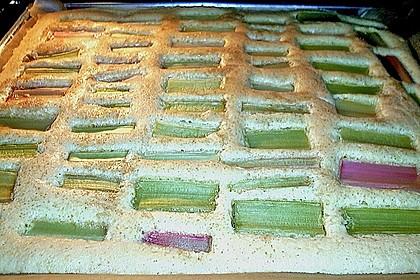 Rhabarberkuchen 11