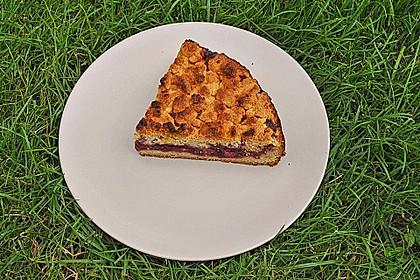 Kirsch-Streuselkuchen 47