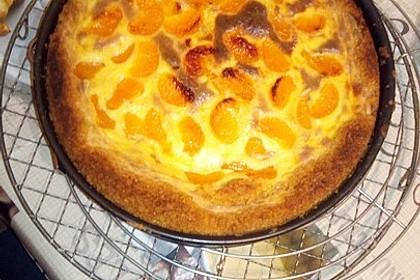 Mandarinen-Schmand-Kuchen 185