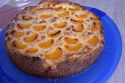 Mandarinen-Schmand-Kuchen 40