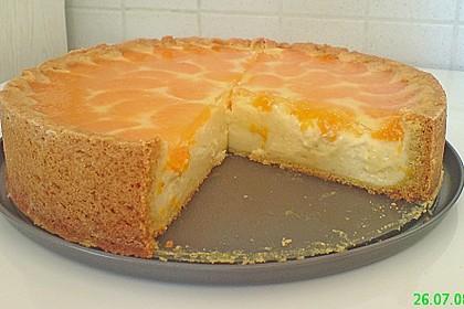 Mandarinen-Schmand-Kuchen 12