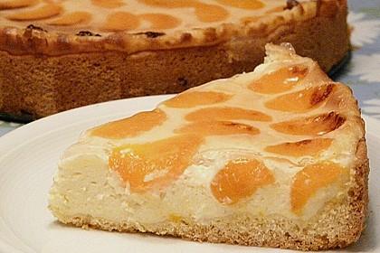 Mandarinen-Schmand-Kuchen 16