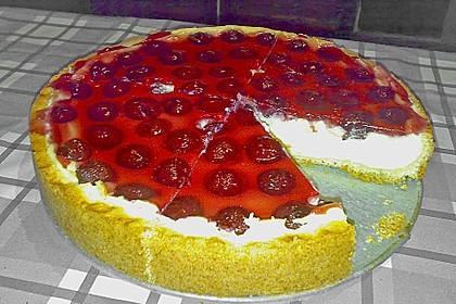 Mandarinen-Schmand-Kuchen 60