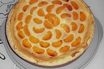 Mandarinen-Schmand-Kuchen 56