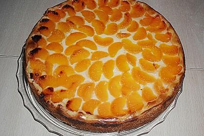 Mandarinen-Schmand-Kuchen 136