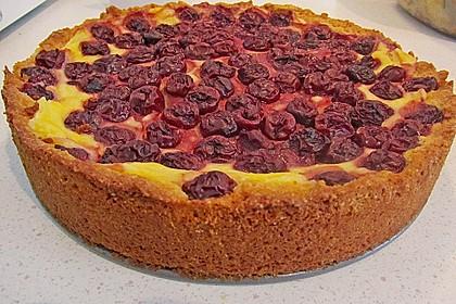 Mandarinen-Schmand-Kuchen 155