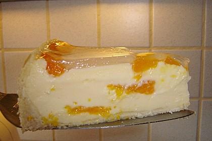 Mandarinen-Schmand-Kuchen 101