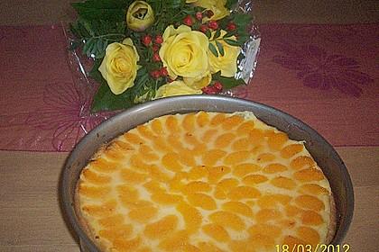 Mandarinen-Schmand-Kuchen 90