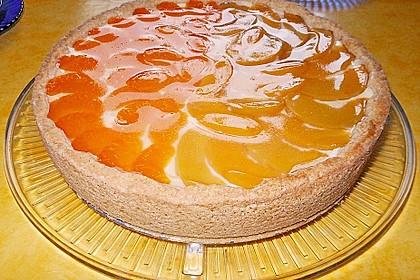 Mandarinen-Schmand-Kuchen 110