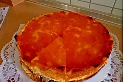 Mandarinen-Schmand-Kuchen 162
