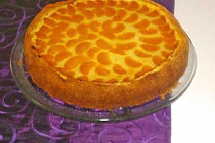 Mandarinen-Schmand-Kuchen 105