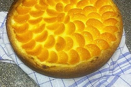 Mandarinen-Schmand-Kuchen 102