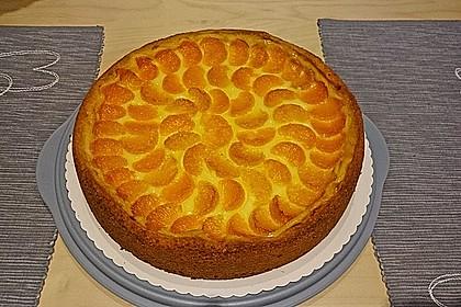 Mandarinen-Schmand-Kuchen 48