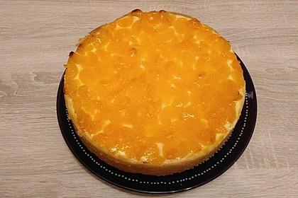 Mandarinen-Schmand-Kuchen 34