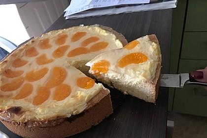 Mandarinen-Schmand-Kuchen 38