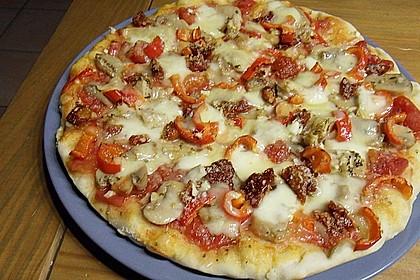 Pizzateig 11