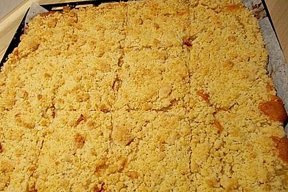Apfelkuchen mit Streuseln 4