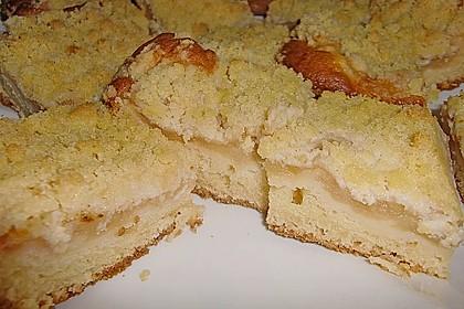 Apfelkuchen mit Streuseln 5