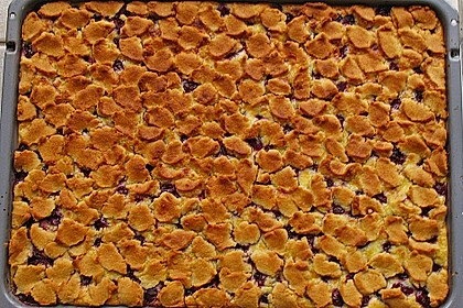 Schlesischer Streuselkuchen à la Sylvia 20