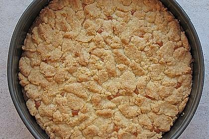 Schlesischer Streuselkuchen à la Sylvia 3
