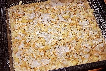 Apfel - Buttermilch - Kuchen 4