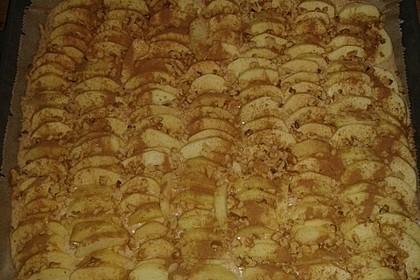 Apfel - Buttermilch - Kuchen 9