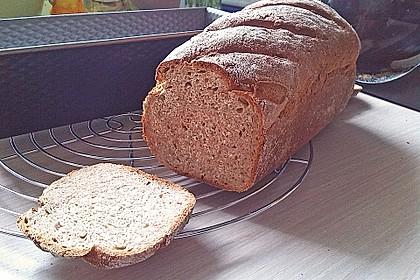 Sonnenblumen - Dinkel - Brot