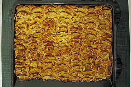 Apfelkuchen, super einfach 12