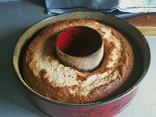 kokoskuchen sch ttelkuchen rezept mit bild von derwohli. Black Bedroom Furniture Sets. Home Design Ideas