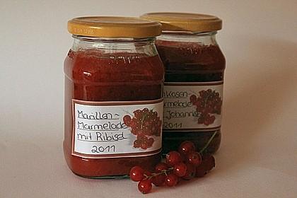 Aprikosenmarmelade mit roten Johannisbeeren 0