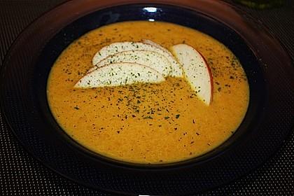 Feine Karottensuppe 6