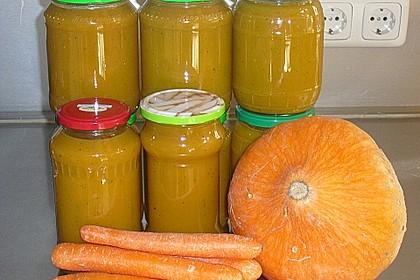 Kürbis - Möhren - Suppe 13