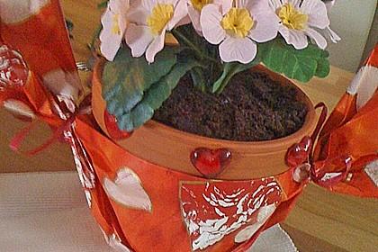 Schokokuchen in einem Blumentopf 1
