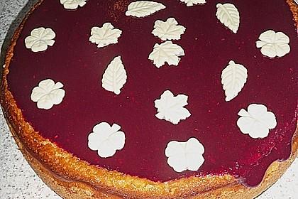 American Cheesecake 62