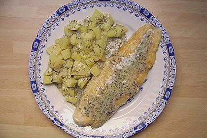 Pangasius mit Zitronen - Dill - Sauce 7