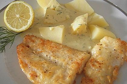 Pangasius mit Zitronen - Dill - Sauce 5