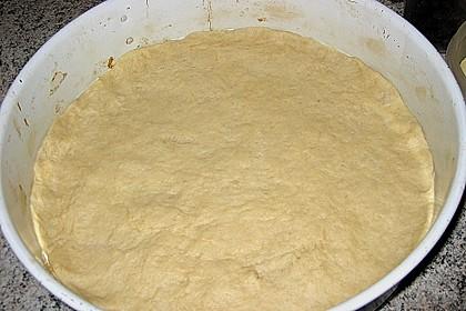 Thüringer Mohnkuchen mit Eierschecke 10